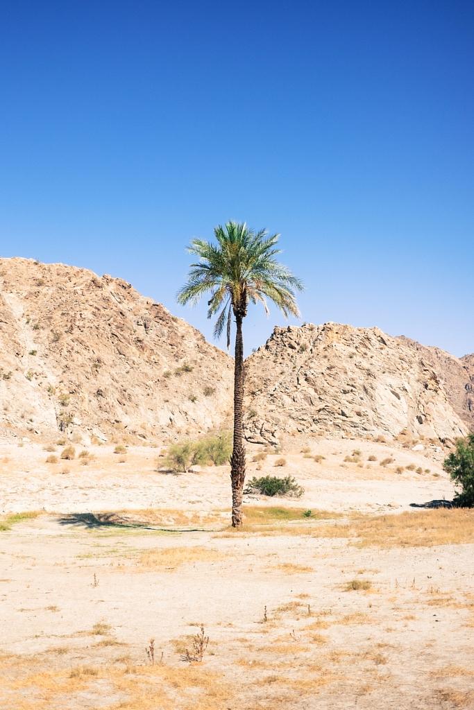 matt dunne palm springs usa mvmnt travel savage thrills savagethrills 3