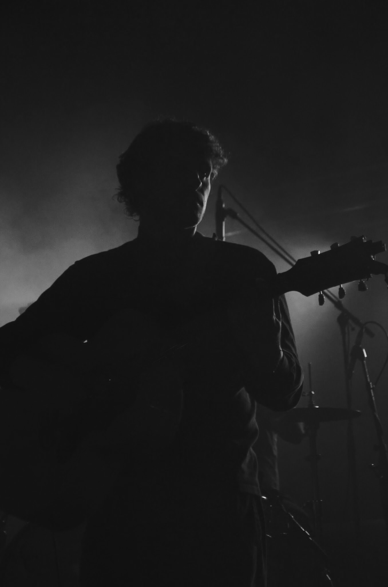 dmas music live review melbourne photo credit ryley clarke savage thrills savagethrills 8